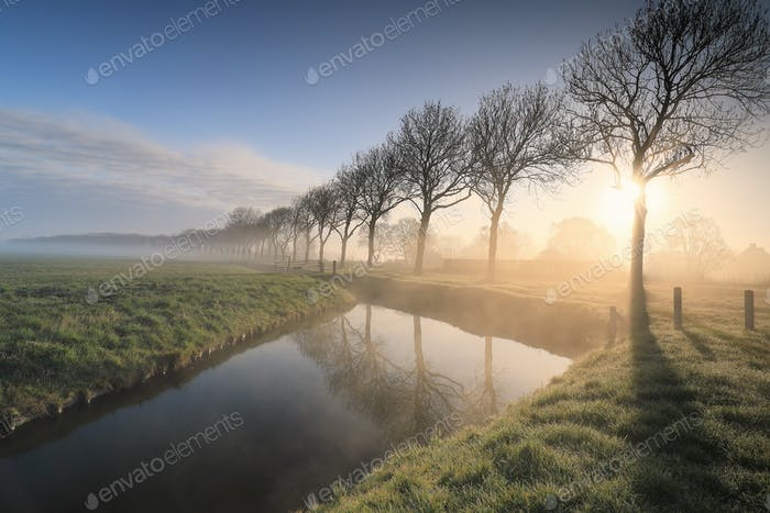 beautiful serene foggy sunrise in countryside