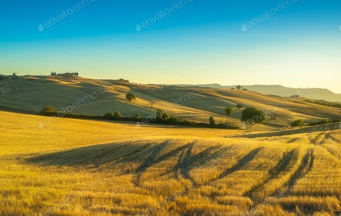 Tuscany countryside panorama, fields and trees on sunset. Italy