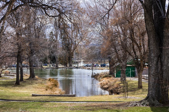 Pond surrounded by large trees in Idlewild park, near downtown Reno, Nevada