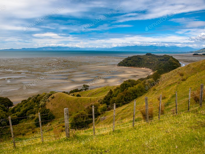 View over Grassland with Flowers at Puponga bay, South Island, N