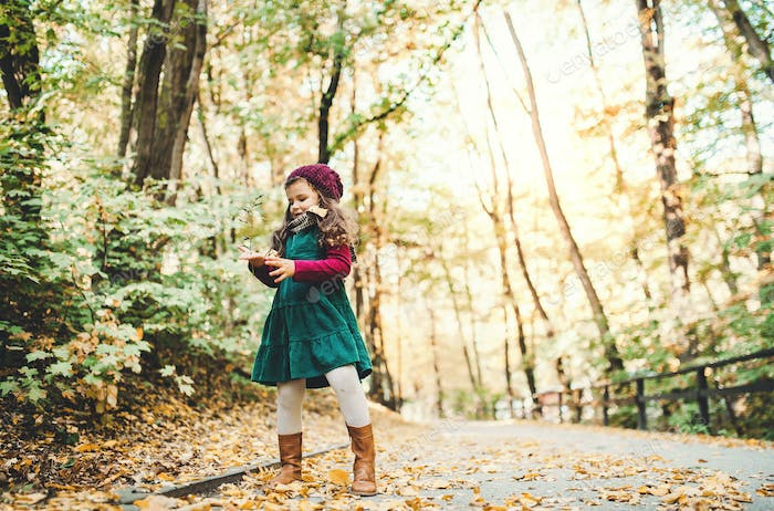 A portrait of a small toddler girl standing in forest in autumn nature. Copy space.