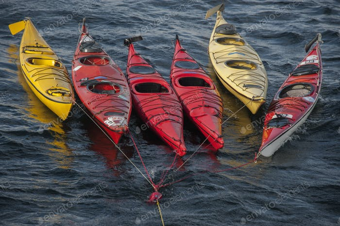 Sea kayaks moored on a long mooring rope, floating on the water surface.