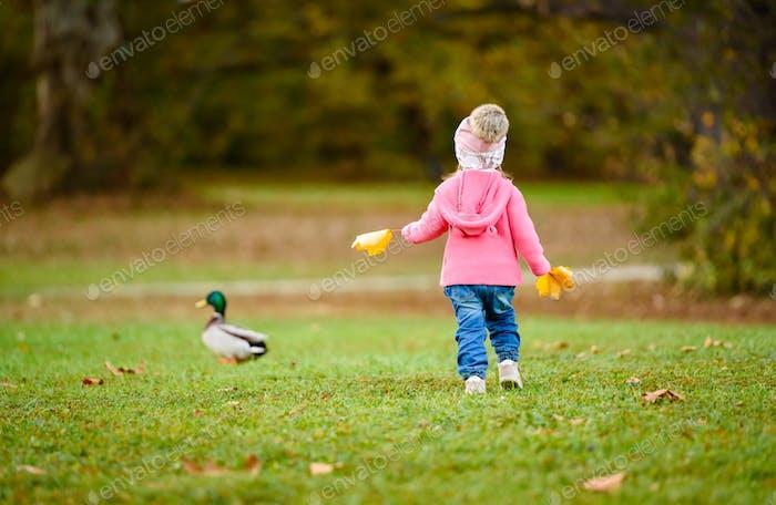 Porträt von entzückenden Baby Mädchen hält gelbe Blätter und jagt wilde Ente im Herbst Park.