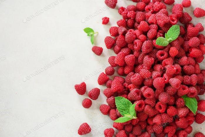 Frische Bio-Himbeeren mit Minzblättern. Frucht-Hintergrund mit Kopierraum. Sommer und Beeren