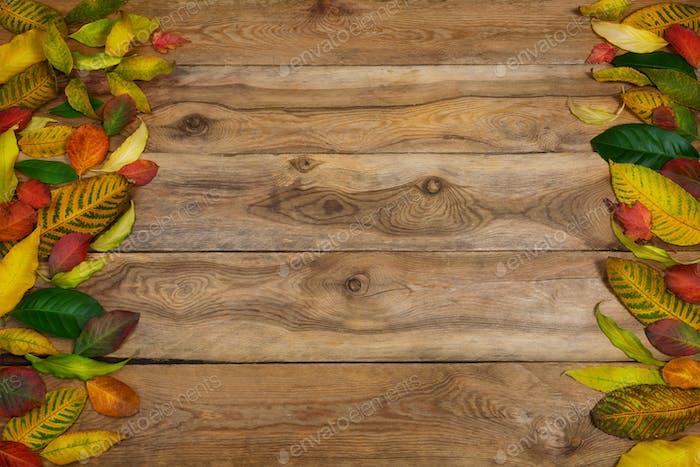 Thanksgiving Hintergrund mit Rahmen der Herbstblätter, Kopierraum