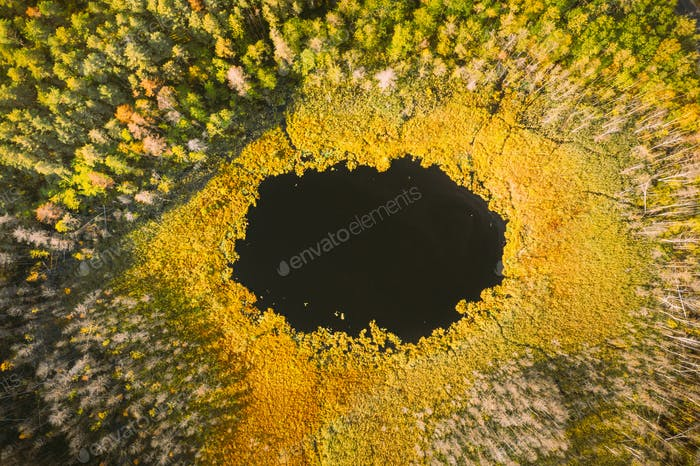 Braslaw Or Braslau, Vitebsk Region, Belarus. Aerial View Of Round Lake And Green Forest Landscape In