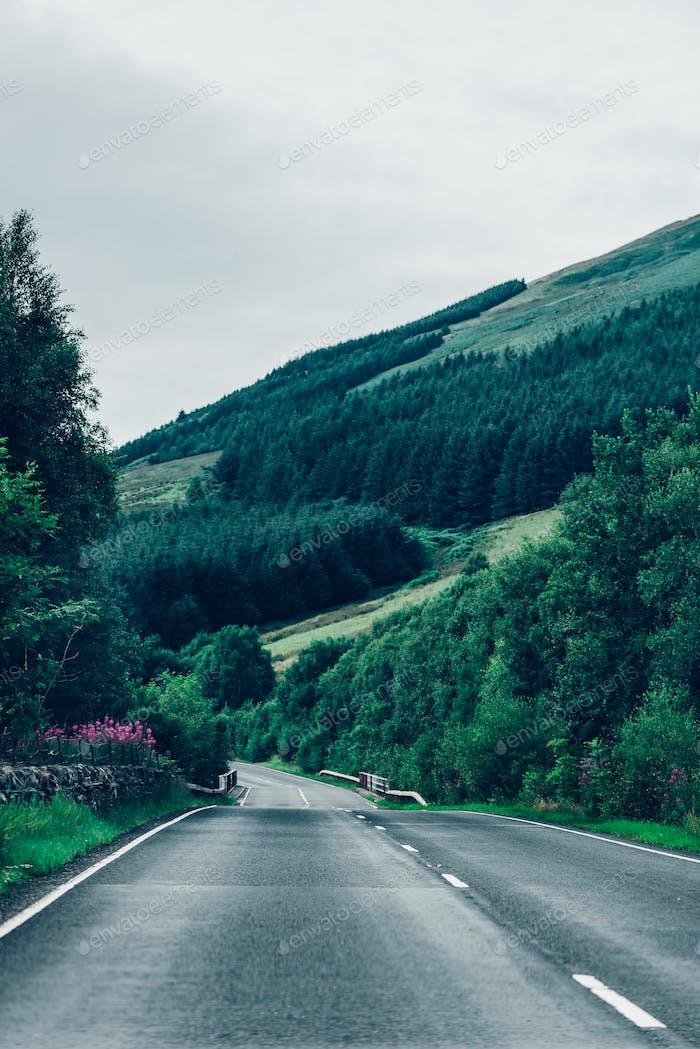 Winding road in green hills