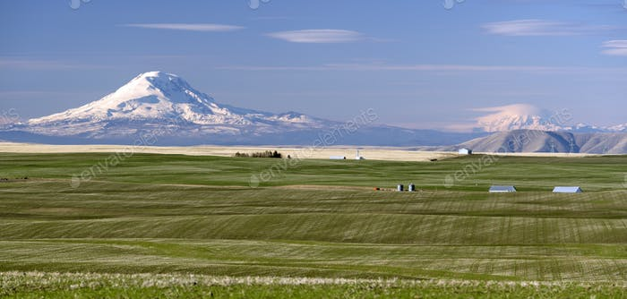 Oregon Agriculture Mt Rainier Mount Adams Cascade Range