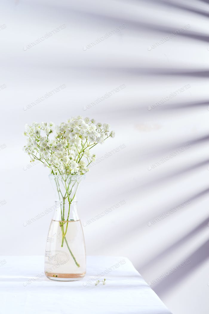 Fresh flower twigs of Gypsophila plant in glass vase on a table covered textile cloth against wall