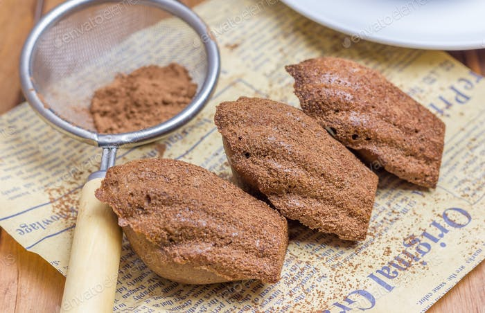 Cocoa powdered choco madeleines, closeup