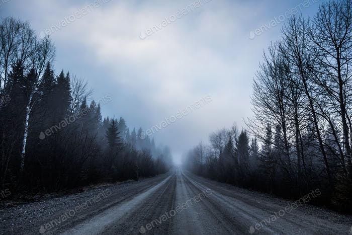 Spooky Fog and Bad Visibility on a Rural Road in Forest