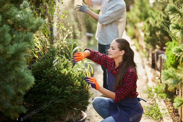 Girl gardener dressed in apron is pruning plants in the beautiful nursery-garden on a sunny day