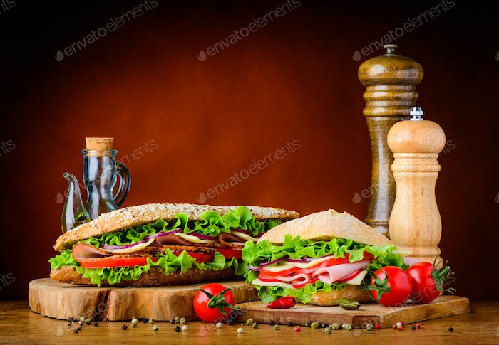 Burger and Sandwich with Ingredients