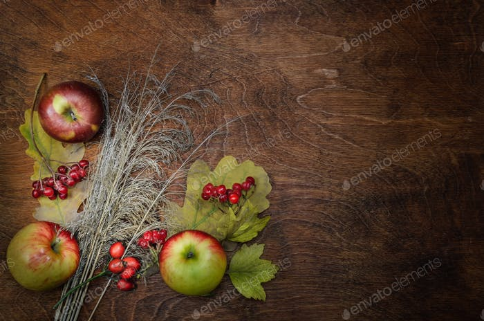 apples, dry spikelets and leaves