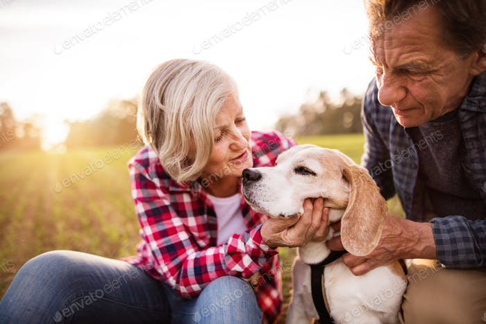 Senior couple with dog on a walk in an autumn nature.