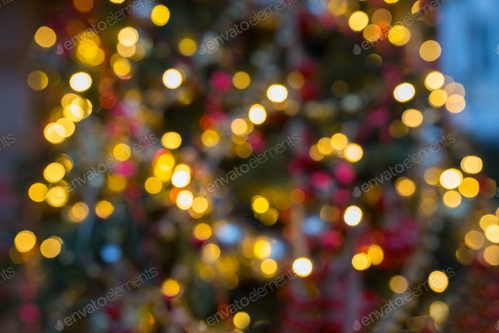 fir tree with blurred christmas lights background