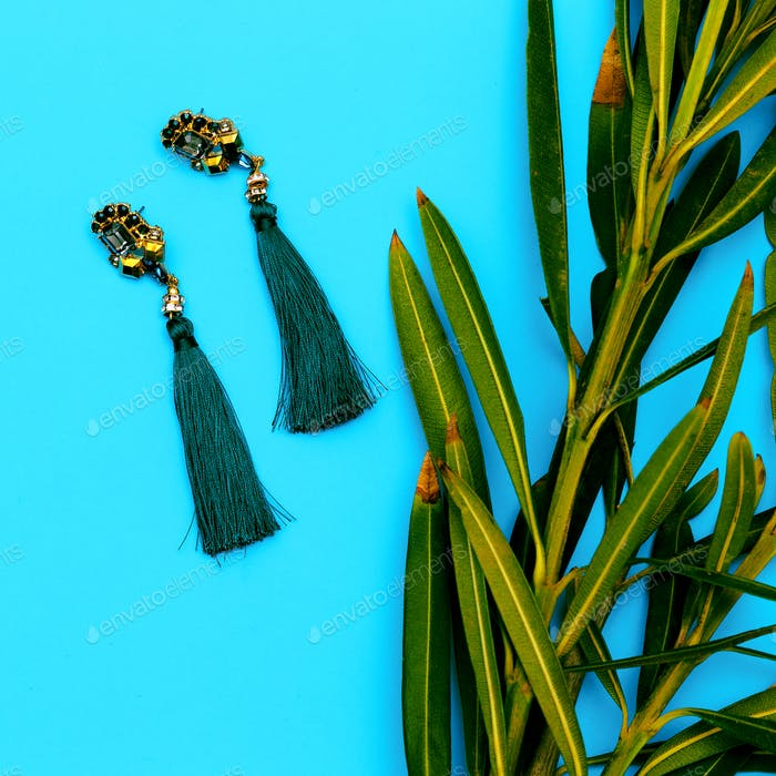 Earrings. Stylish accessory women. Flat lay Store
