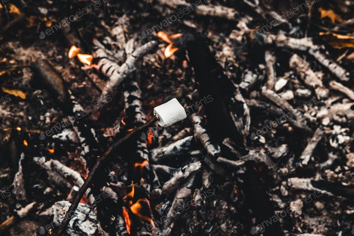 Two marshmallows roasting on the camp fire and getting nicely golden brown