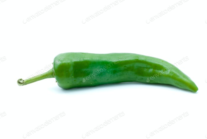 SIngle green chili pepper
