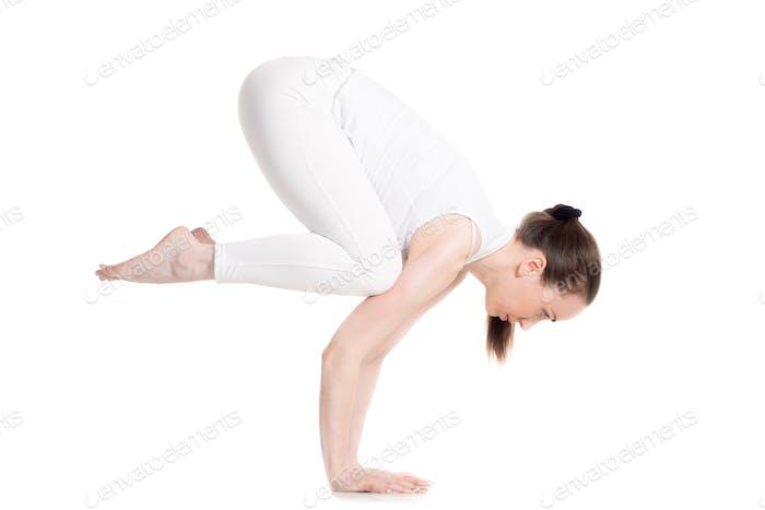 Crane (Crow) yoga Pose
