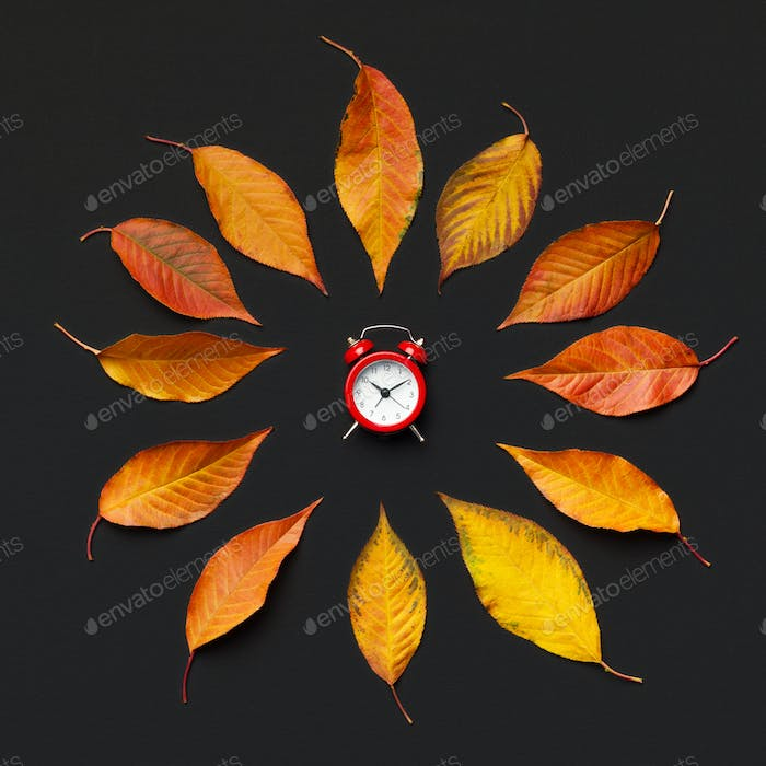 Creative autumn flower of fallen leaves and red alarm clock