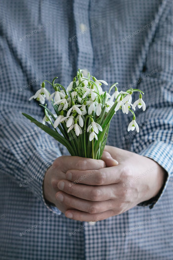 Bouquet of wild snowdrops