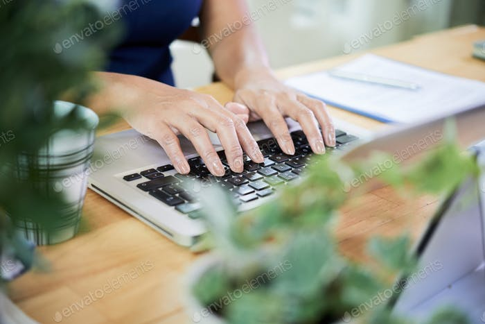 Crop woman typing on laptop at desk
