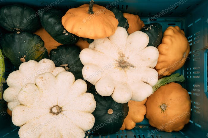 Pumpkins Of Different Sizes, Colors And Shapes Lie In A Wicker B