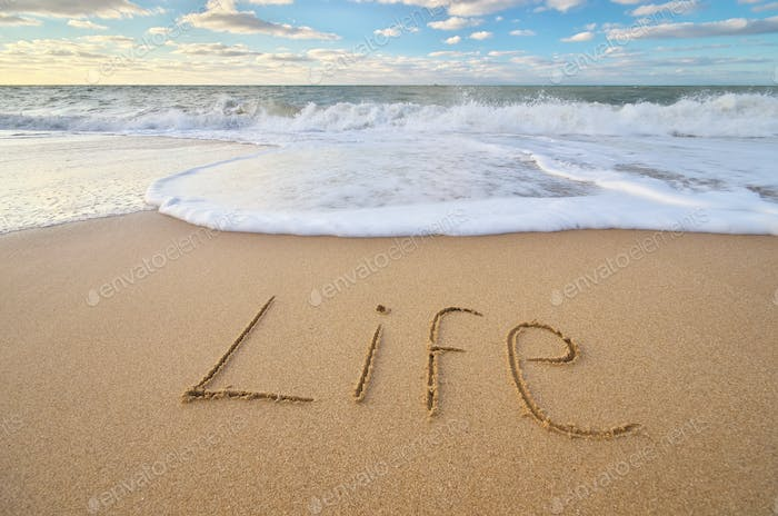Life word on the sea sand.