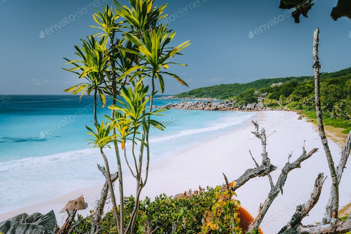 Vacation holiday at Petite Anse paradise beach in summer season . La Digue island, Seychelles