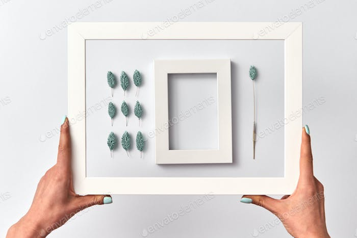 Creative herbal picture with empty frame in a woman's hands on a light background