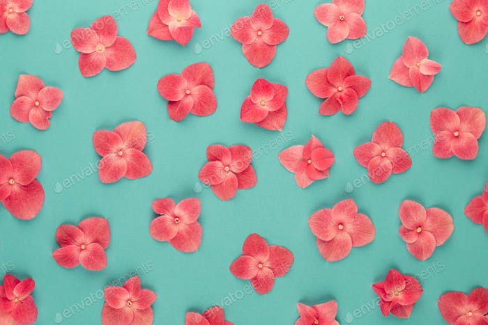 Pattern made of pink flowers background.