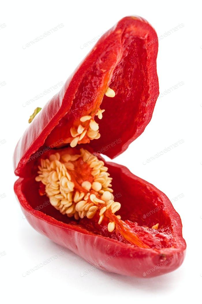 Rote scharfe Chilischote, isoliert auf weißem Hintergrund