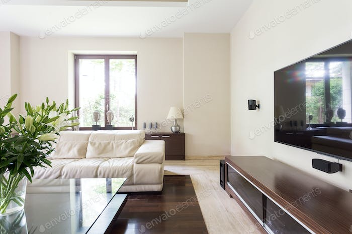 Elegant living room with white couch