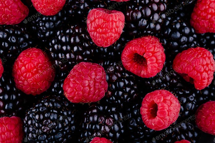 fresh ripe organic raspberries and blackberries
