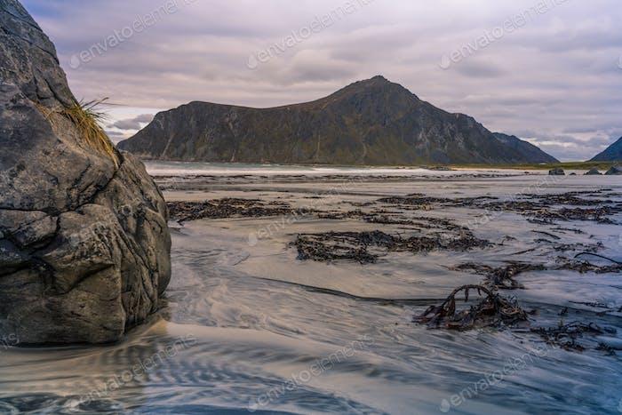 Skagsanden Beach Landscape  Lofoten in Norway