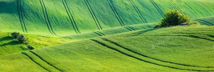 Mährische hügelige Landschaft