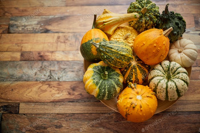 Decoration made from small pumpkins. Colored pumpkins in different varieties