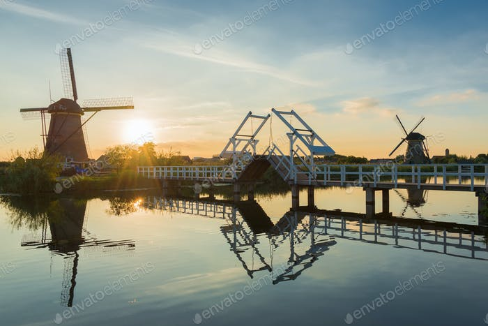 Summer at the windmills of Kinderdijk