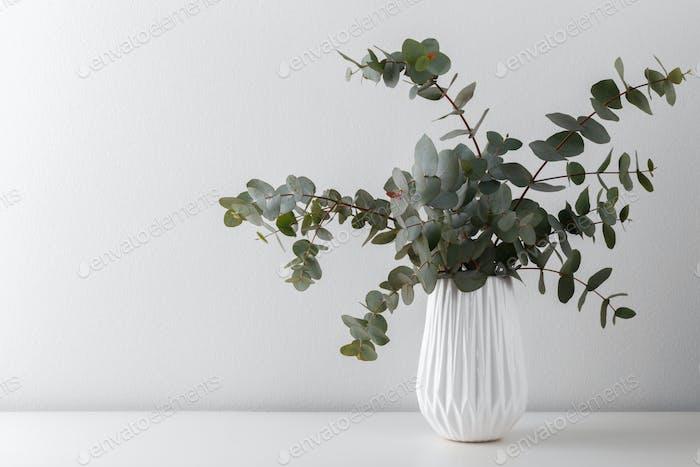 Eucalyptus in a ceramic vase
