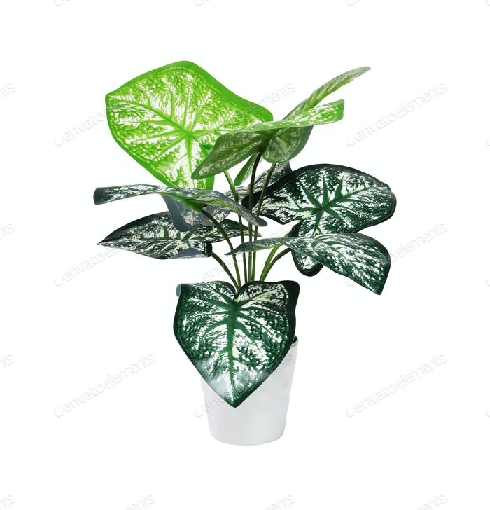 Kunststoff-Topfpflanze