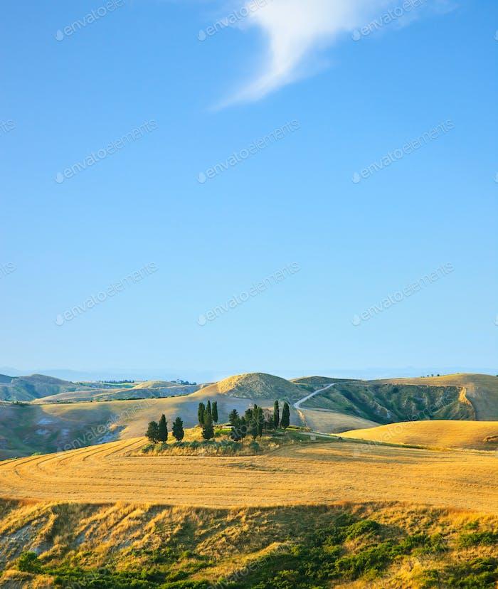 Toskana, ländliche Landschaft. Cuntryside Bauernhof und Zypressen