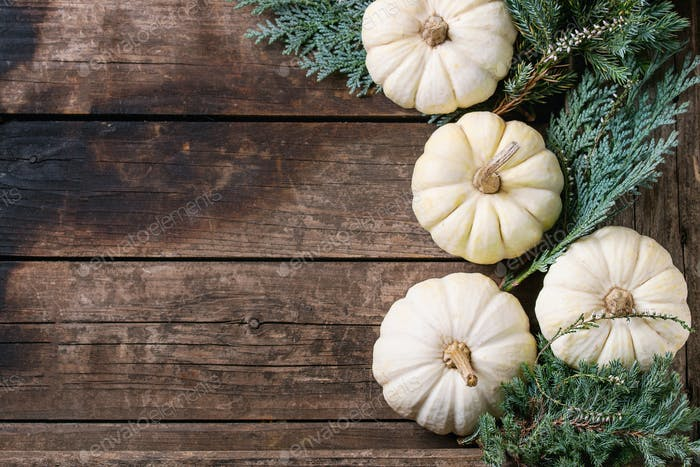 White decorative pumpkins