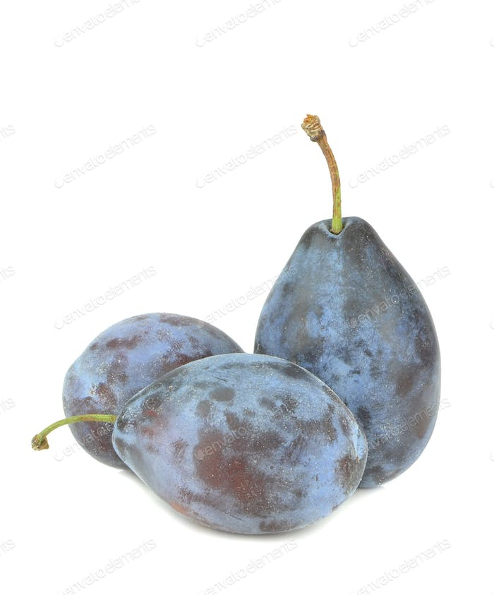 Small Group of Plums