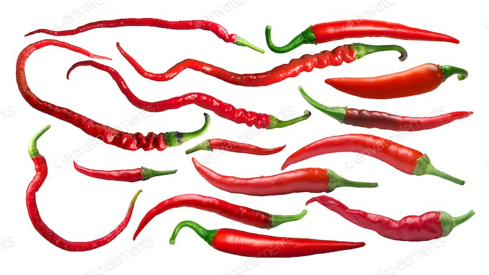 Cayenne chile peppers, paths