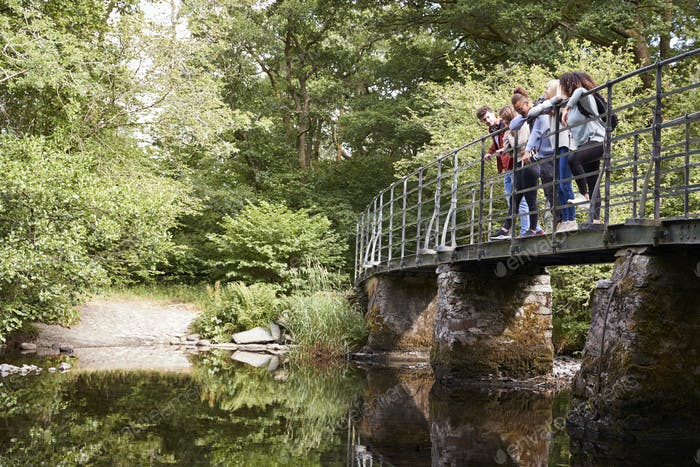 Multi ethnic group of five young adult friends stand looking down from a bridge during a hike