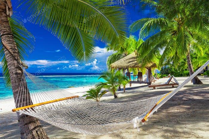 Hammock Between Palm Trees On Tropical Beach Of Rarotonga