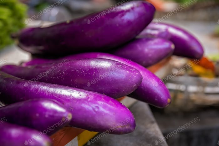 Aubergines for sale