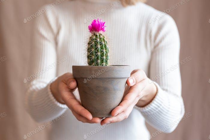 Woman holding a cactus pot