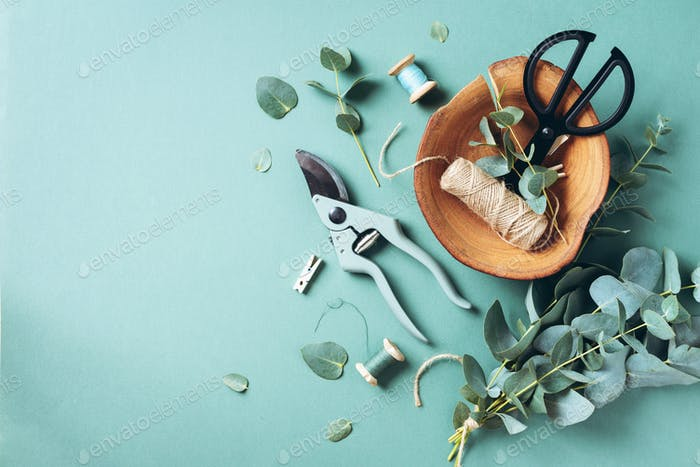 Eucalyptus branches and leaves, garden pruner, scissors, wooden plate over green background with